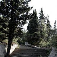 Забытый парк :: Олег Плотников
