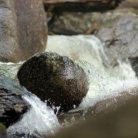 вода камень точит :: Олеся Селиванова
