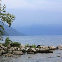 Телецкое озеро :: Олеся Селиванова