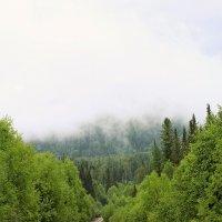 дорога в облака :: Олеся Селиванова