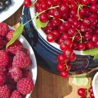 Летние ягоды :: Valeria Ashhab