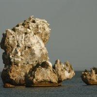 Камень :: roberto carlos