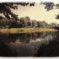 Река Ворскла #2 :: Евгений Кочуров