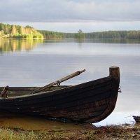 Озеро Синемукса (Карелия) :: Николай Тренин