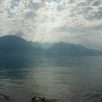 Lac de Genève :: Ольга ****
