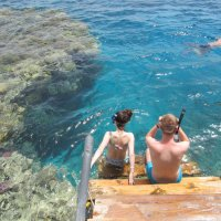 отпуск....Египет....Красное море...было.... :: tgtyjdrf