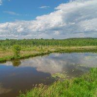 Лето на реке :: Александр Смирнов