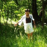 утро в лесу :: prokyl