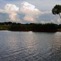 DSC_1601 Прогулка у реки .... :: Aleks Minin