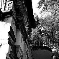 Балкон (2) :: Marina Bernackaya Бернацкая