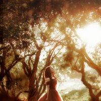Волшебный лес :: Ира Никина