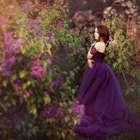 Сиреневый сад :: Ира Никина