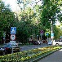 В 1-ом Хорошёвском переулке... :: Елена