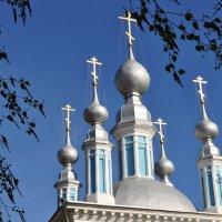 Купола старообрядческой церкви. :: Лариса Вишневская