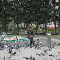Голуби кормятся :: Олег Афанасьевич Сергеев
