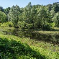Старый пруд :: Владимир Брагилевский