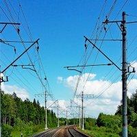 Просторы железнодорожные! :: ирина
