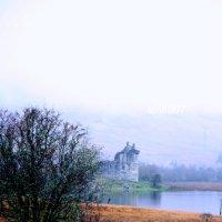 в тумане... :: Olga