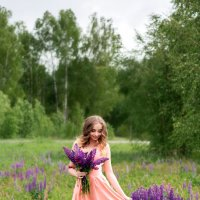 Люпиновое настроение :: Каролина Савельева