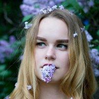 сиреневый рай :: Наталия Никонова