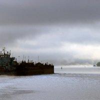 Седой туман :: Ирина Беркут