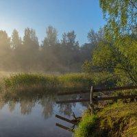 Утро на озере :: Владимир Кириченко  wlad113