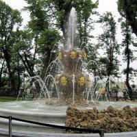 Коронный фонтан в Летнем саду. :: Ирина ***