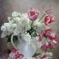 С белой сиренью и тюльпанами :: Наталия Тихомирова