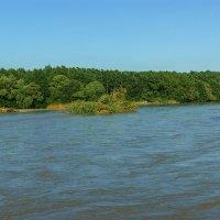 Река Кубань Летом :: Игорь Сикорский