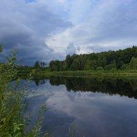 Лесное озеро :: Владимир Кириченко  wlad113