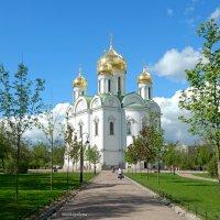 Екатерининский собор в Пушкине :: Елена Гуляева (mashagulena)