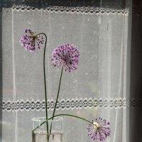 Три цветка - букет готовый! :: Ирина Данилова