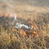 пожар :: Ольга Горд