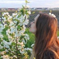 Вдыхая яблонь аромат... :: Вячеслав & Алёна Макаренины