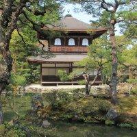Япония. Киото. Гинкаку-дзи (Храм Серебряного павильона). :: Виктория