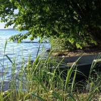 у озера :: Наталия Зыбайло