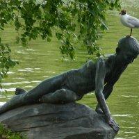 бесцеремонная чайка :: Наталия П
