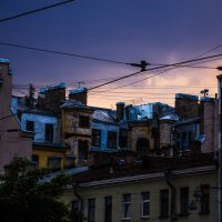 Питерские крыши :: Olya Lanskaya