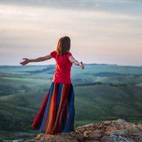 Полететь как птица :: Ирина