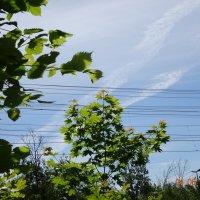А обещали ливень и шквалистый ветер... :: Galina194701