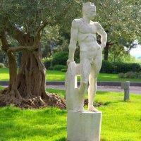 Парковая скульптура Персея в оливковой роще :: Валерий Новиков