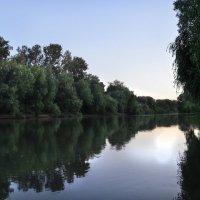 Река Кубань :: Katerina Sheglova