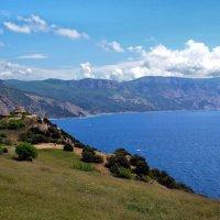 Черноморская синева :: Ольга Голубева