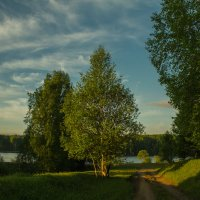 дорога к озеру :: Ольга Ерохина