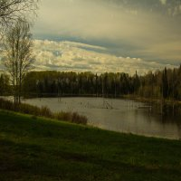 последние дни весны... :: Ольга Ерохина