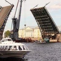 Дворцовый мост на ремонте. :: sav-al-v Савченко