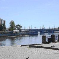 Городская зарисовка - река Преголя :: Маргарита Батырева