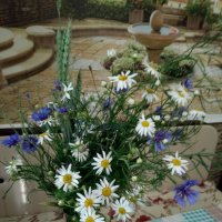 Букет полевых цветов :: BoxerMak Mak