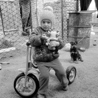 Детки :: Светлана Рябова-Шатунова