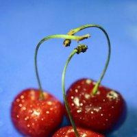 Сладка ягода... :: Владимир однакО...